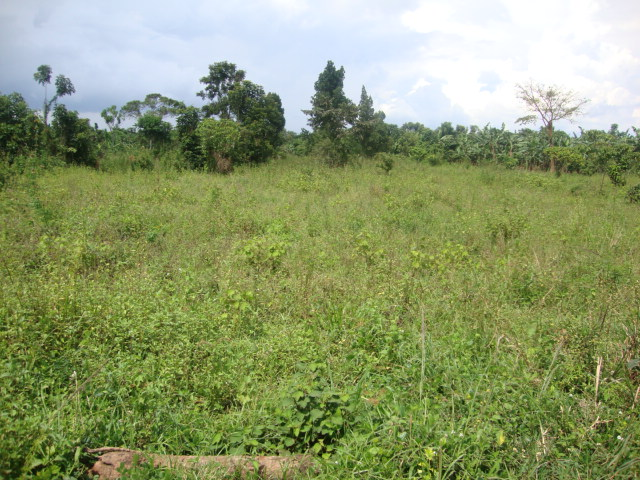 Land for Sale  Homescom